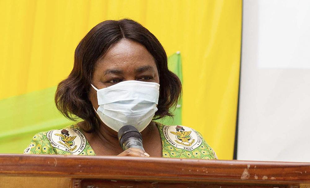 Professor Lydia Apori Nkansah