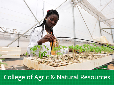 Collge of Agric and Natural Resources img